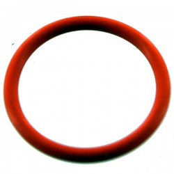 017BN70 R10200187 O RING joint DYE PROTO