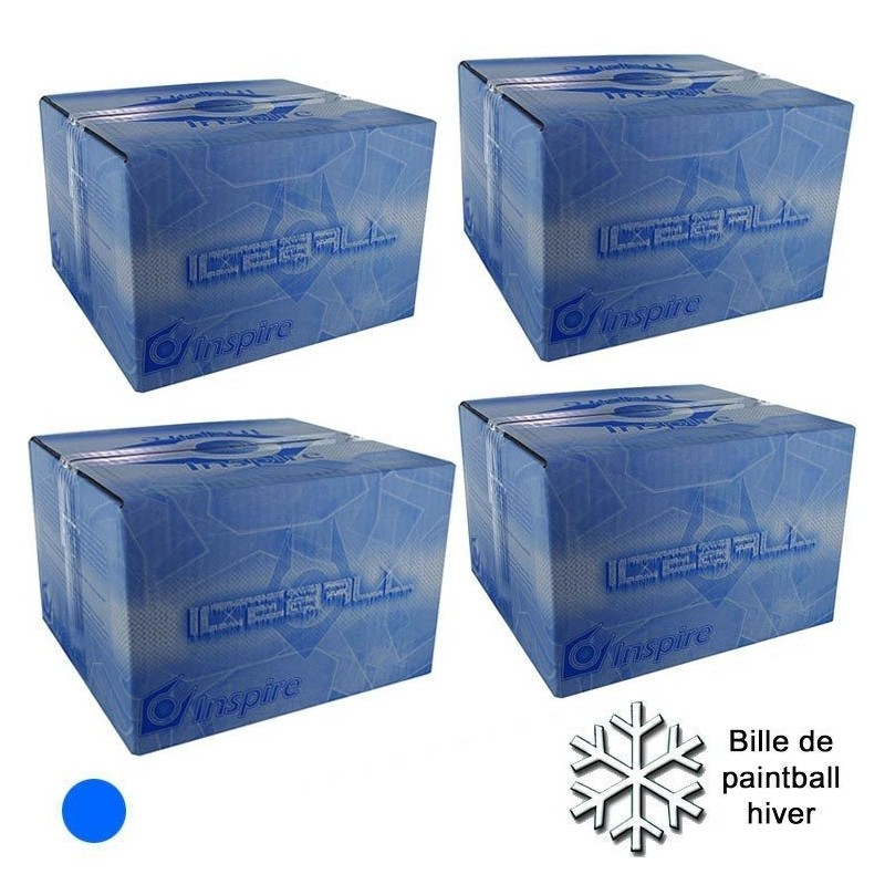 Lot de 4 cartons de iceball
