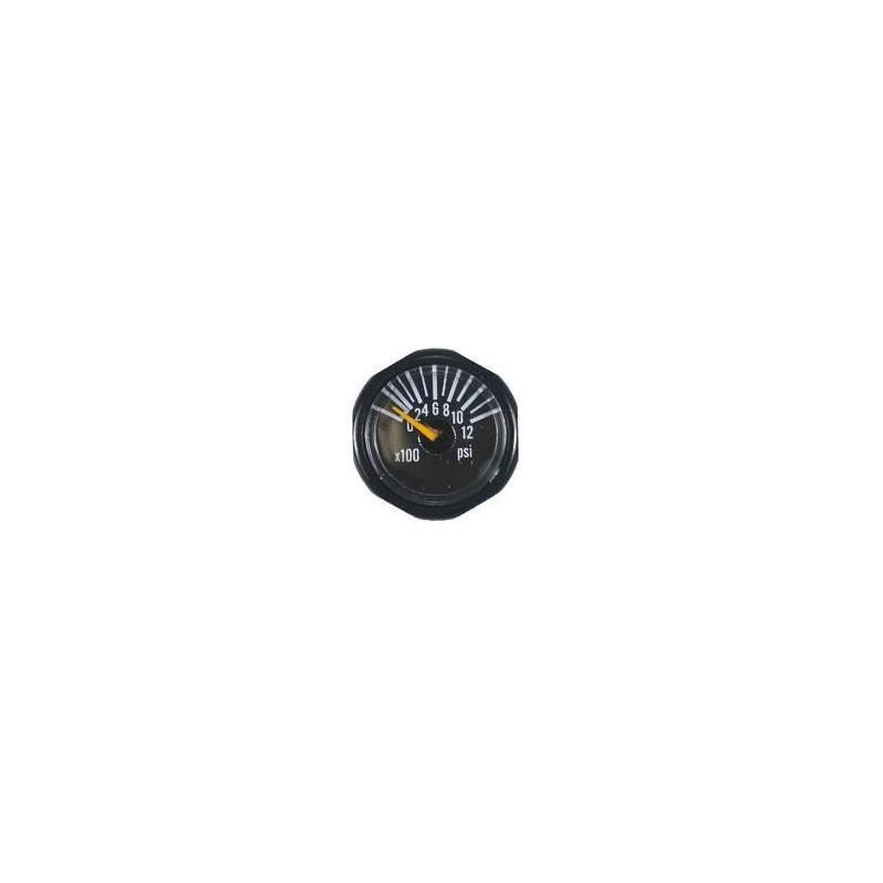 Micro Gauge 1200 PSI Invert
